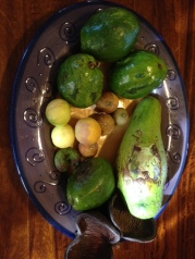 Avocado's and limes from Joneb and Zandra's yard